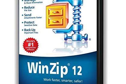 WinZip 12.0 Professional